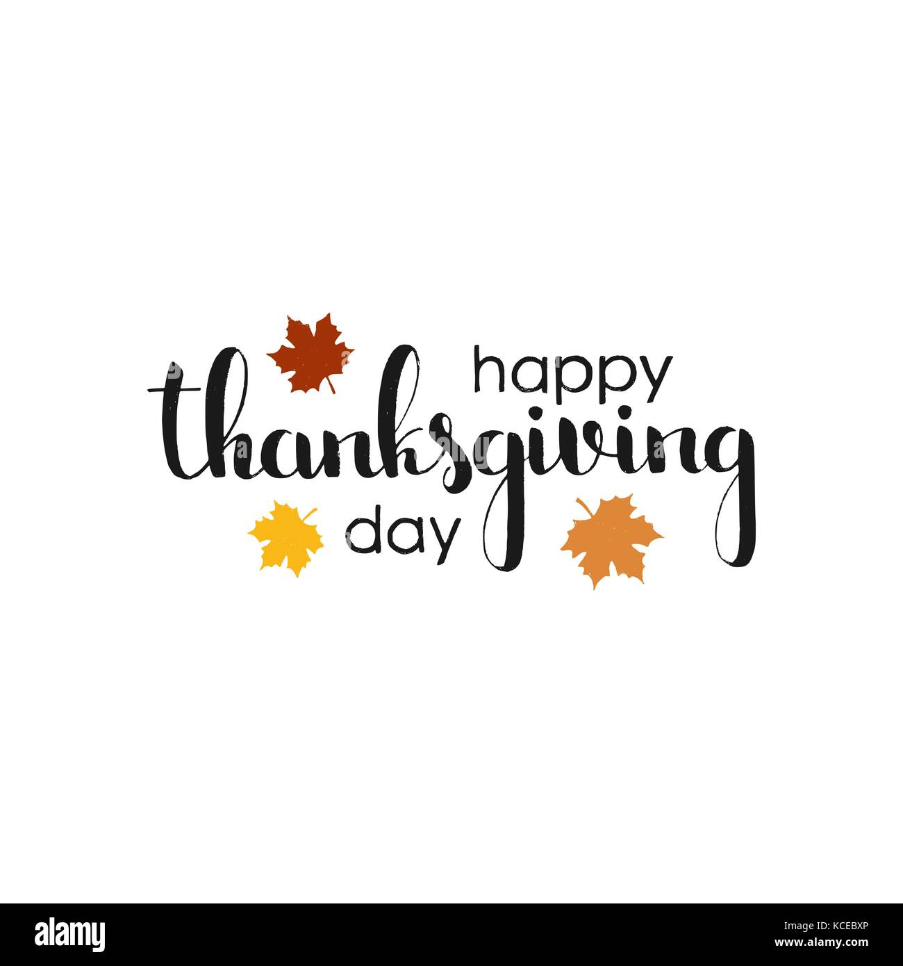Happy Thanksgiving Day Handwritten Lettering Modern Vector Hand Drawn Calligraphy With Maple Leaves Isolated On White Background For Your Design