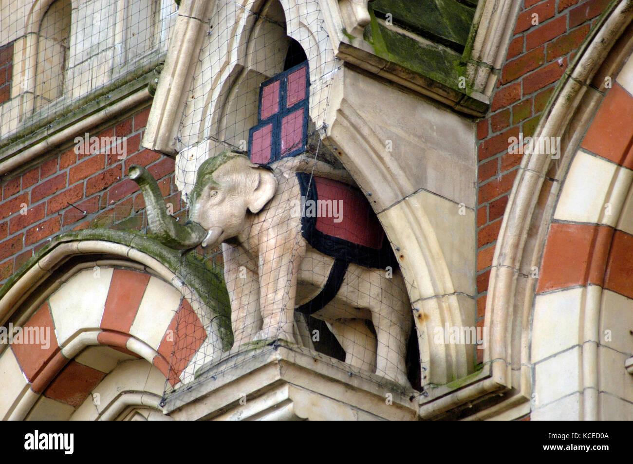 Elephant Tea Rooms, 64 - 66 Fawcett Street, Sunderland. Elephant in niche. - Stock Image