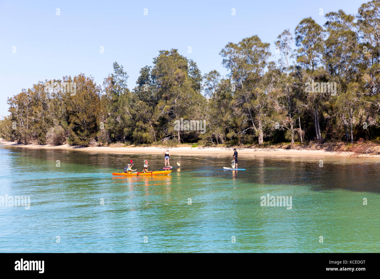 Paddleboarders and people in a kayak paddling on Wallis Lake at Forster on the mid north coast of New South Wales,Australia - Stock Image