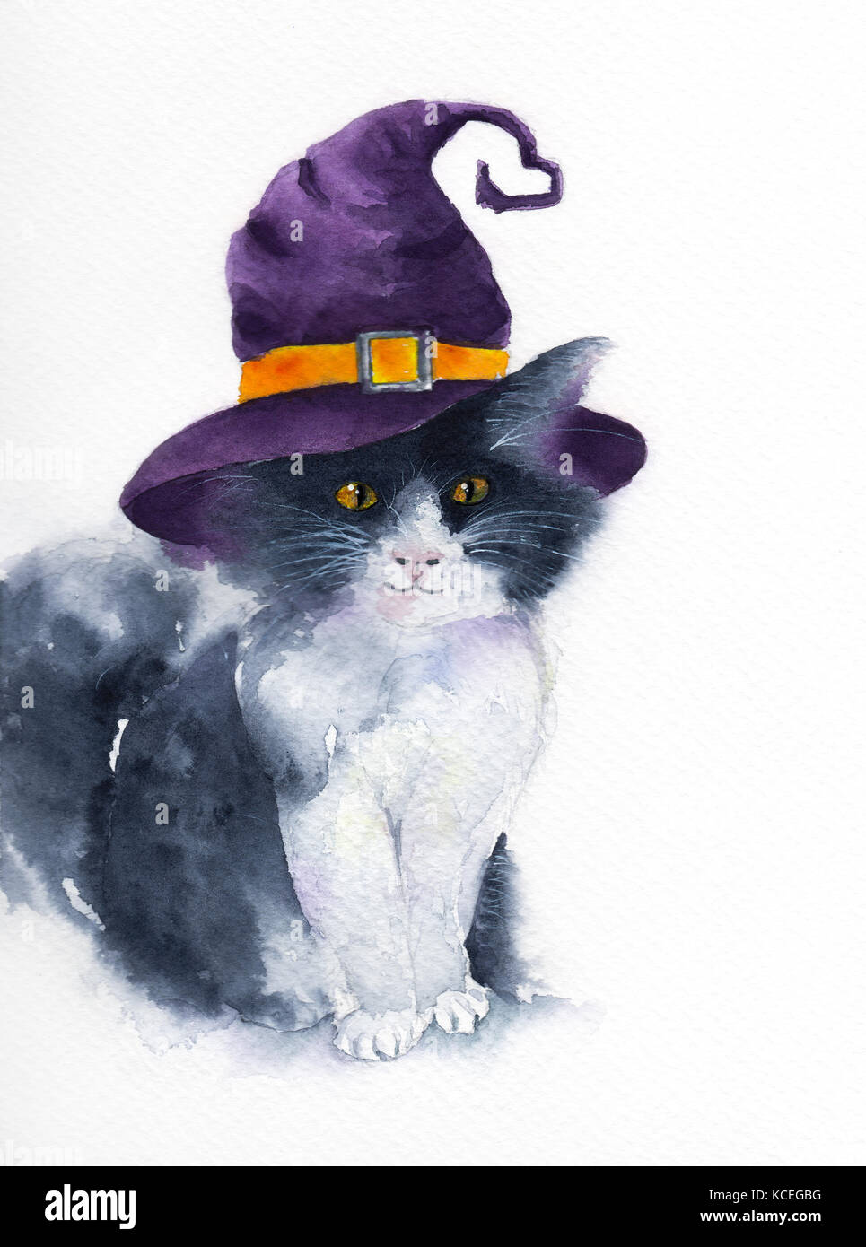 The Cute Cat With Purple Witch Hat Watercolor Illustration Background For Halloween Concept