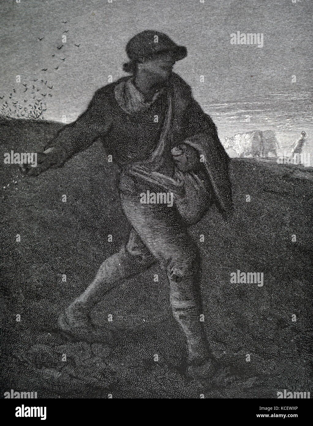Print of the painting titled 'The Sower' by Jean-François Millet (1814-1875) a French painter and one - Stock Image