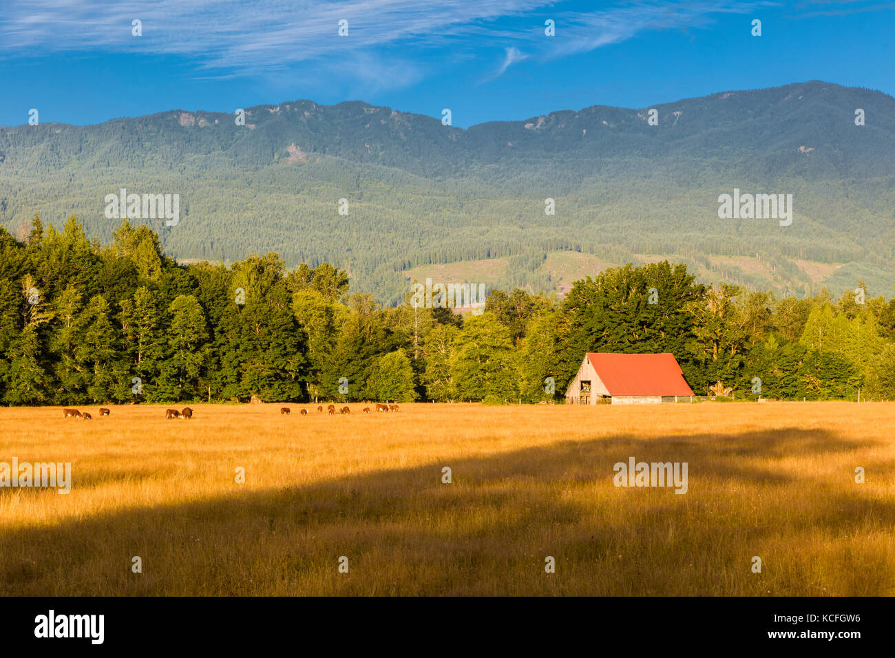Farm in Cascade Mountains in northern Washington State in the United States - Stock Image