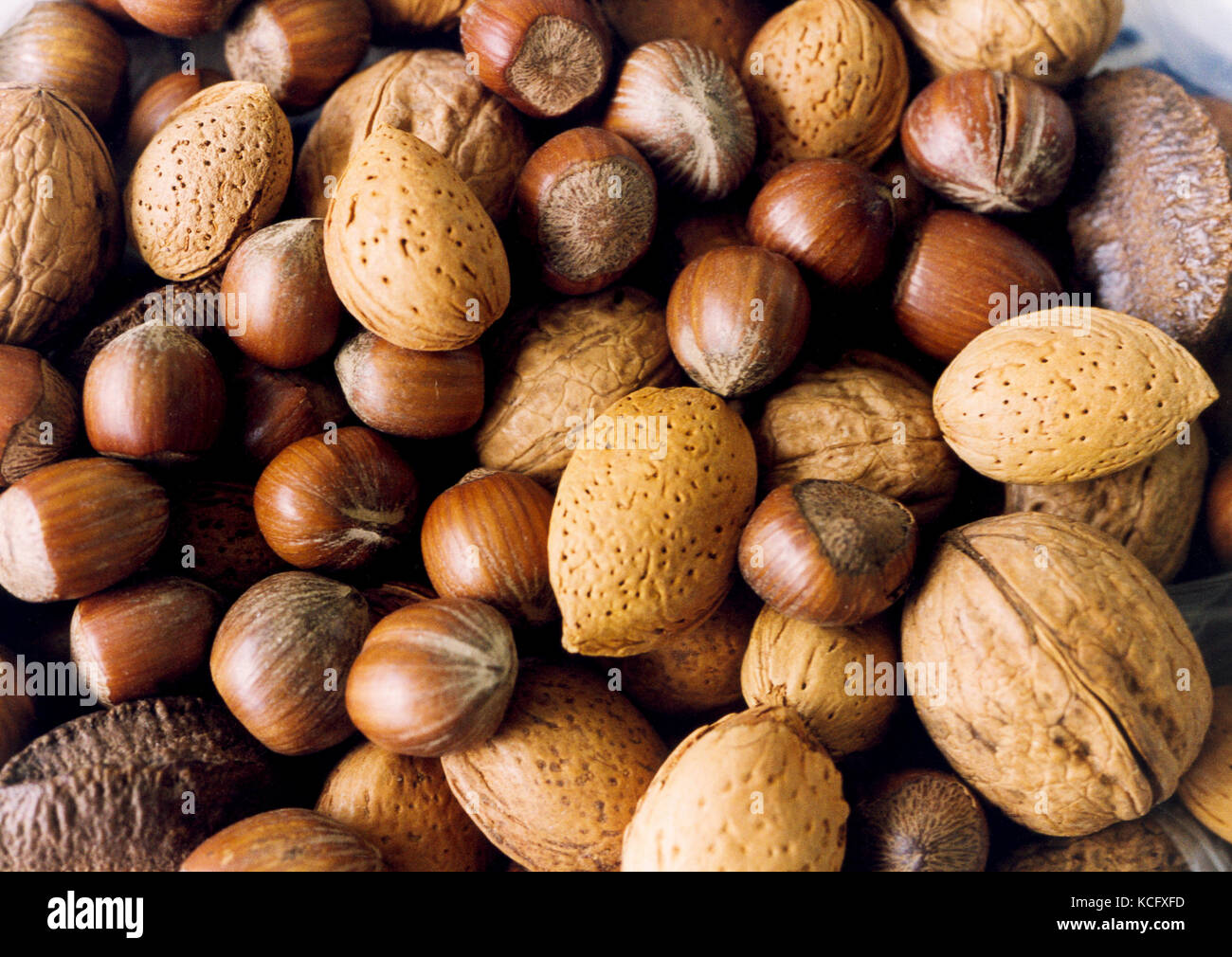 MIXED NUTS 2009 - Stock Image