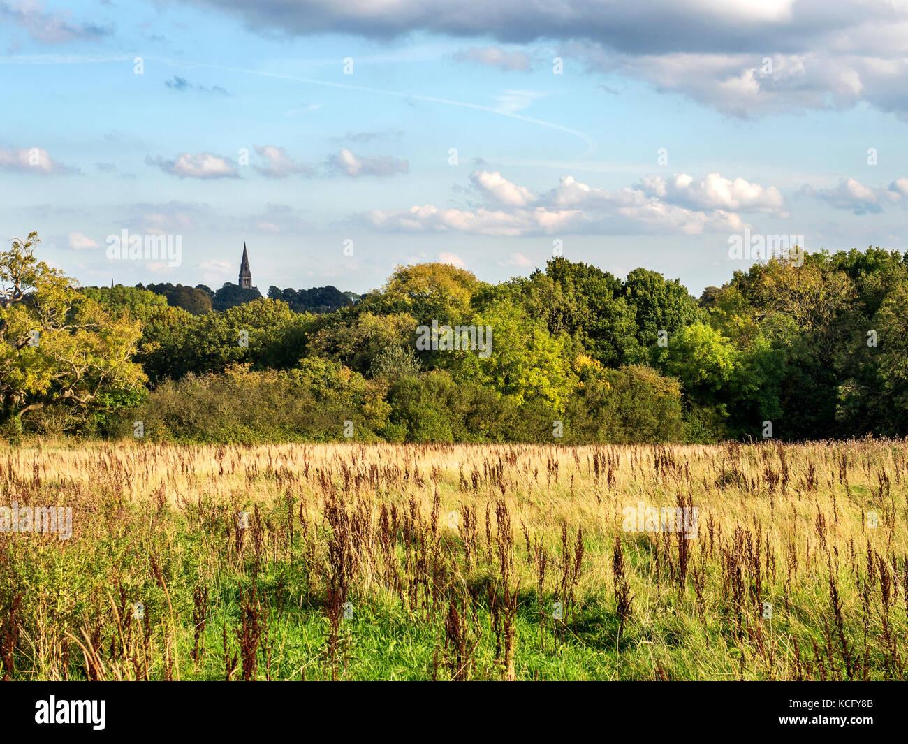 Holy Trinity Church SPire from the Bryl Burton Cycleway near Knaresborough North Yorkshire England - Stock Image