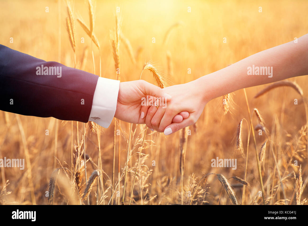 Wedding couple holding hands over ears of corn - Stock Image