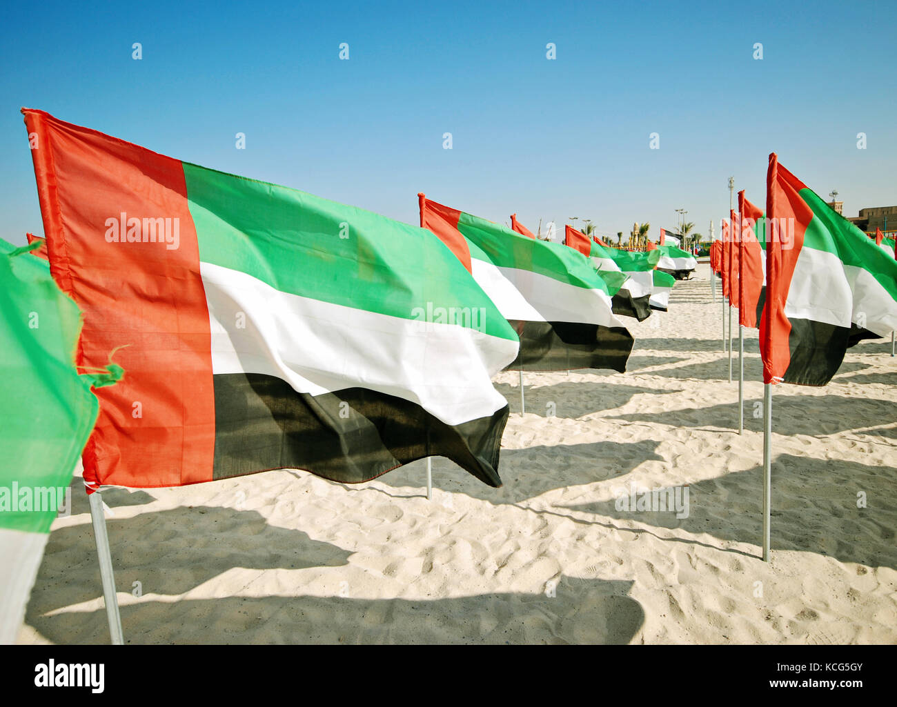 Maby flags of UAE on the beach Celebration of National Day - Day of the United Arab Emirates Stock Photo