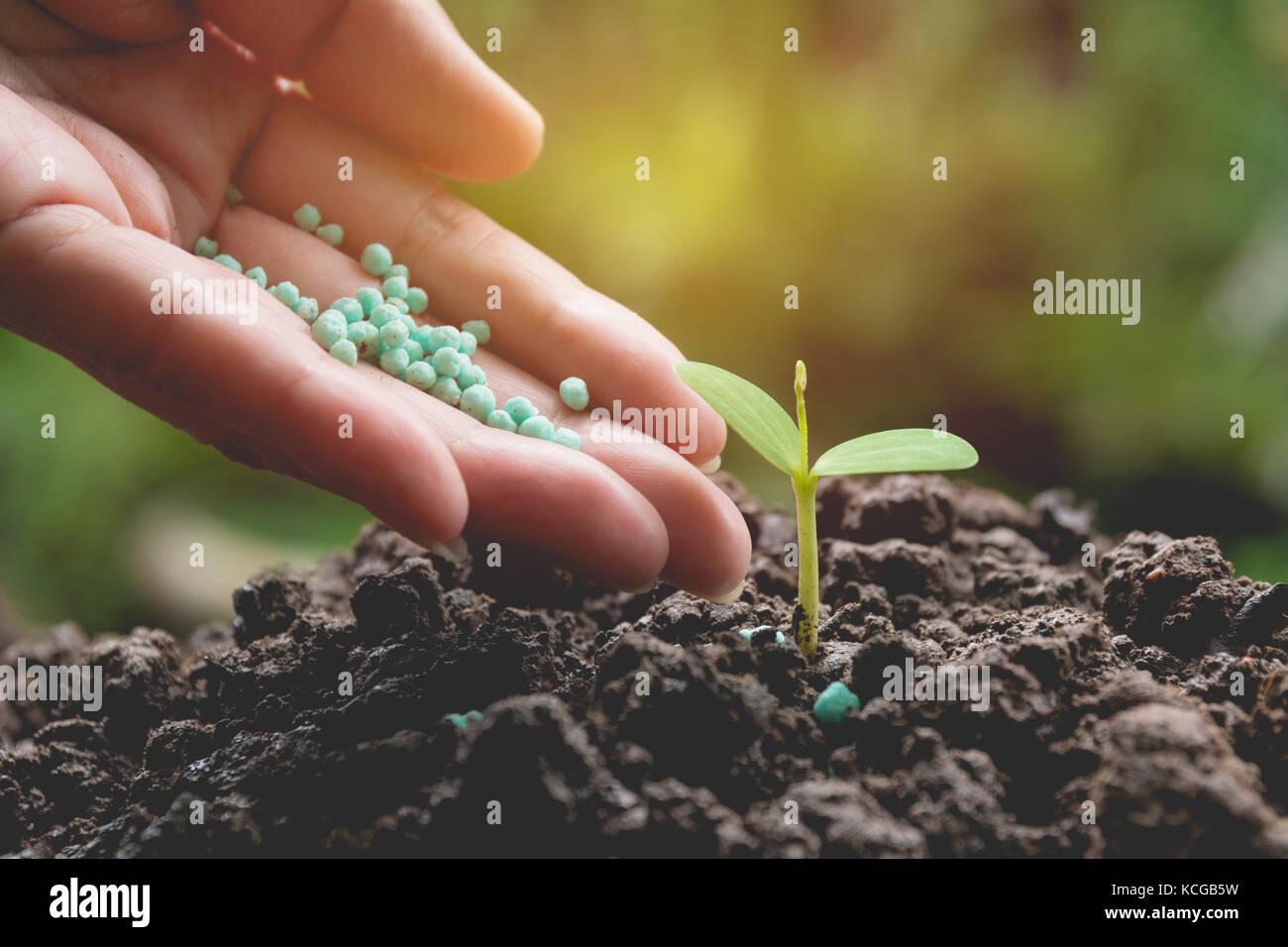 Apply Fertilizer Stock Photos & Apply Fertilizer Stock Images - Alamy