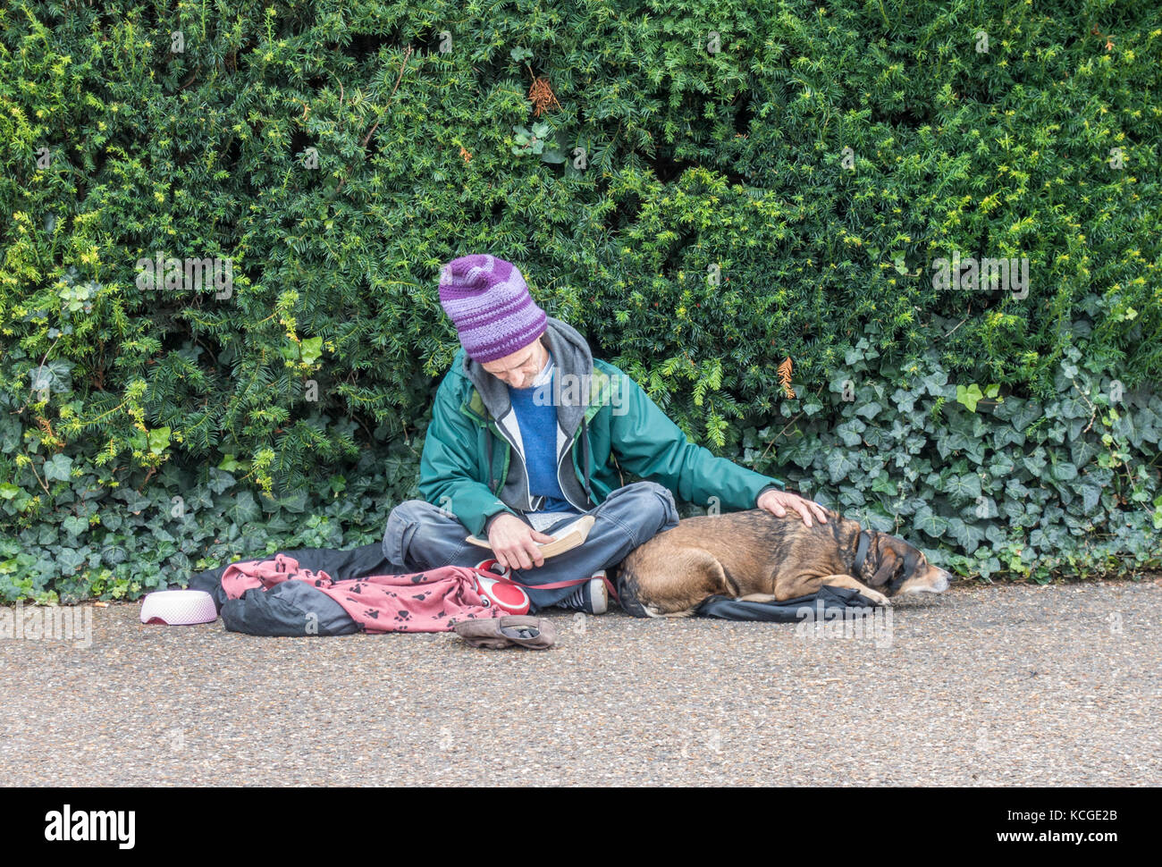 Elderly / old / senior homeless beggar man / rough sleeper, wearing a beanie hat, sitting reading a book with a - Stock Image