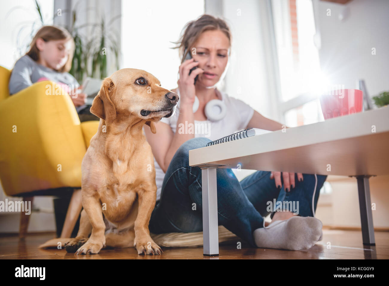 Small yellow dog sitting on the floor by woman who is talking on the smart phone - Stock Image
