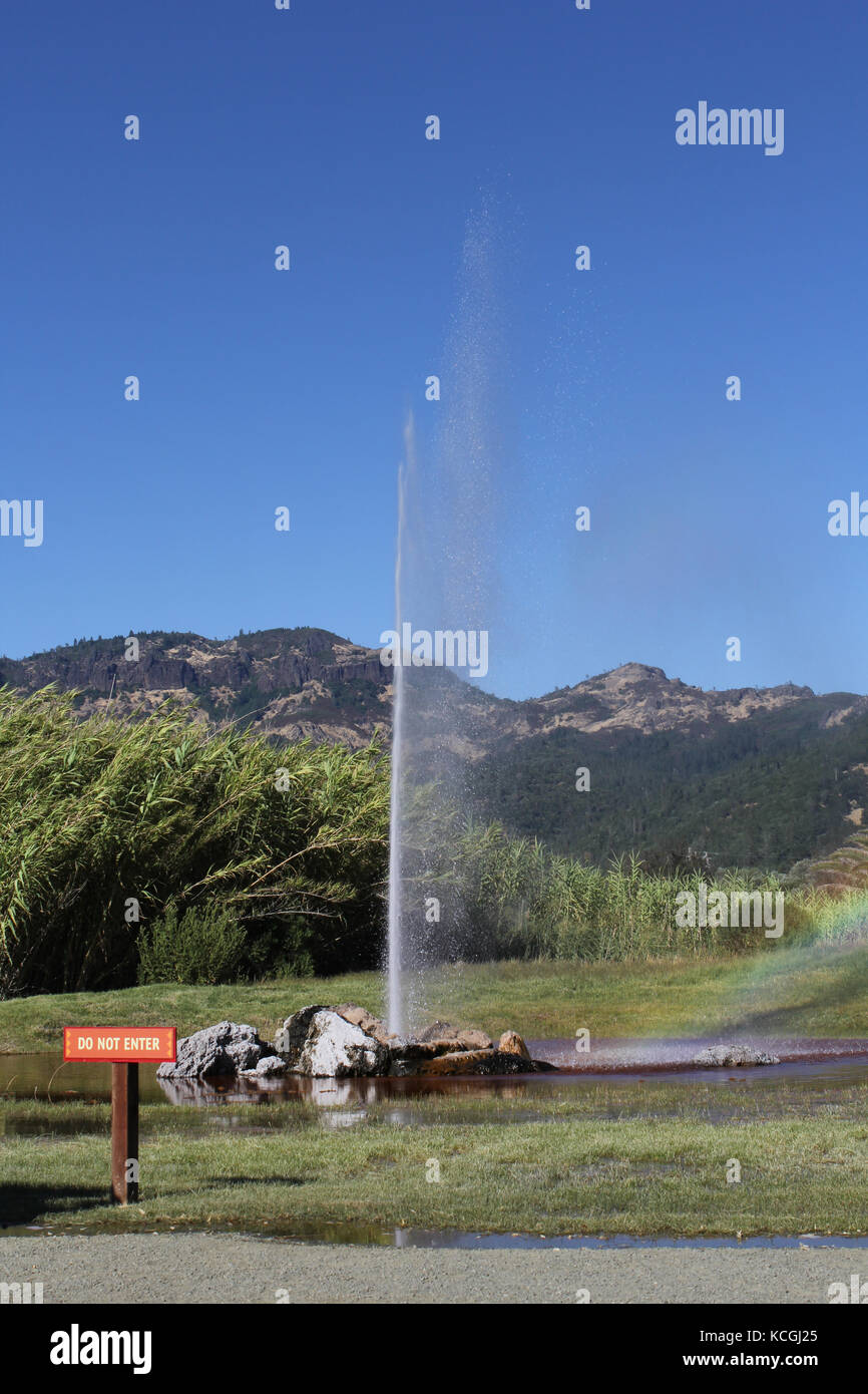 old faithful geyser california - Stock Image