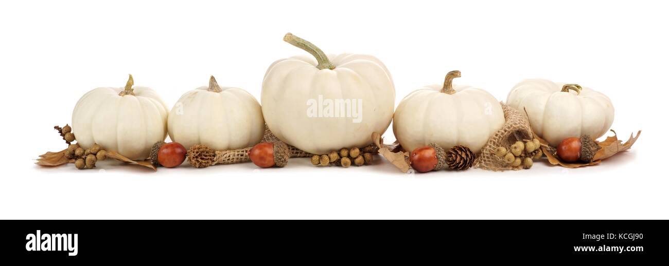 Autumn border arrangement of white pumpkins and brown leaves isolated on a white background - Stock Image