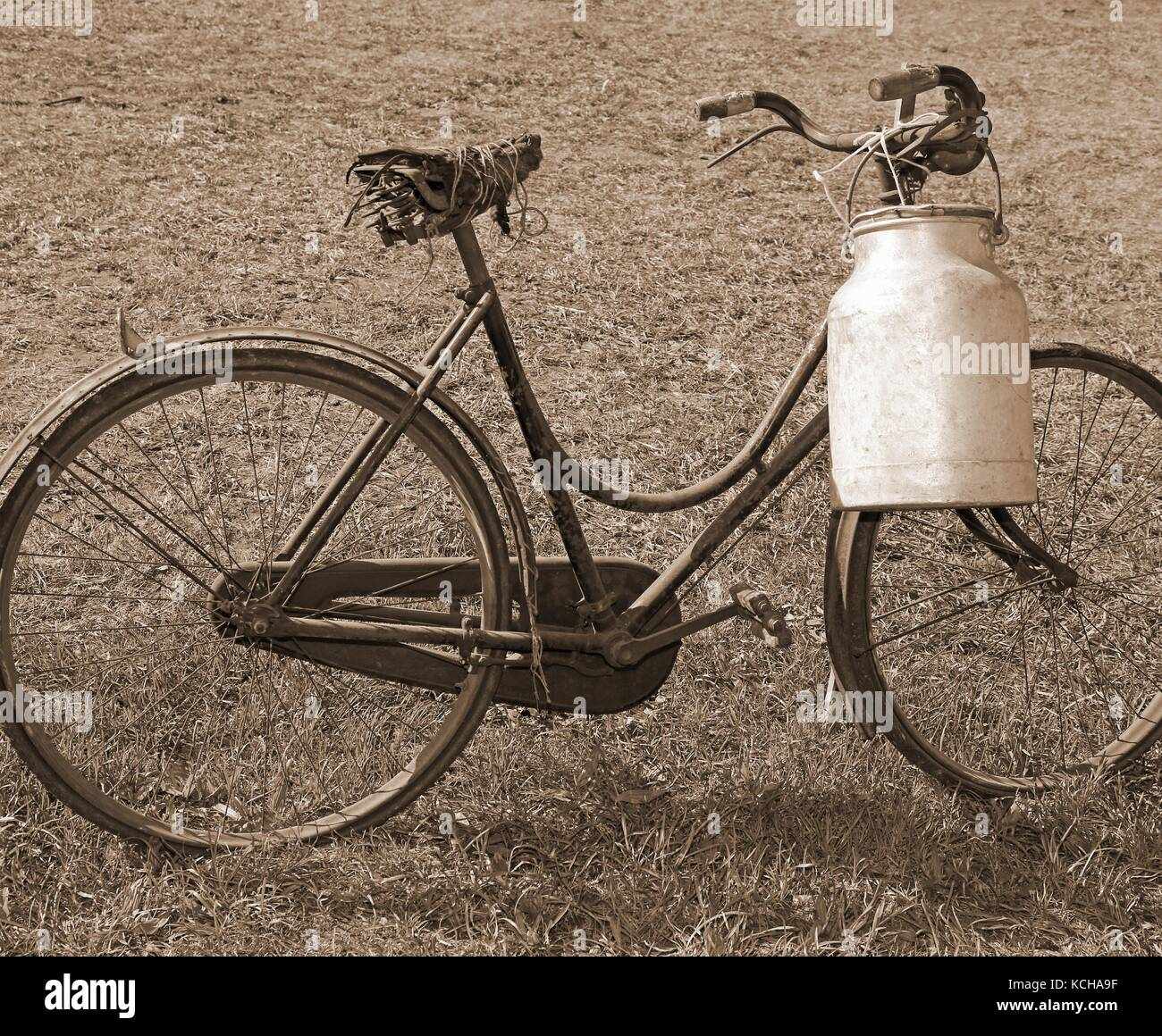 ancient milking bike with aluminum bin for milk transport and speia effect - Stock Image