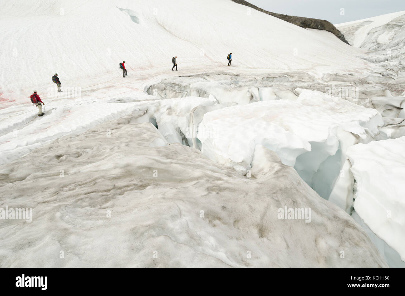 A group crosses a crevasse-ridden glacier near Icefall Lodge north of Golden, BC in the Canadian Rockies - Stock Image