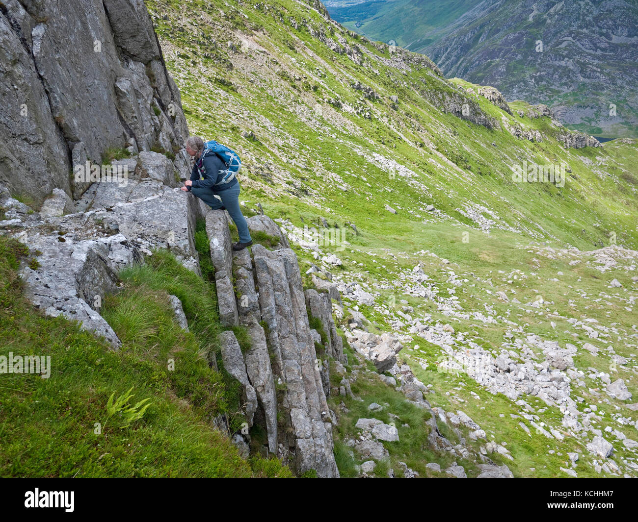 A female hill walker enjoying the grade 1 scramble on 'false' Gribin, a rocky ridge on Snowdonia's Glyderau - Stock Image