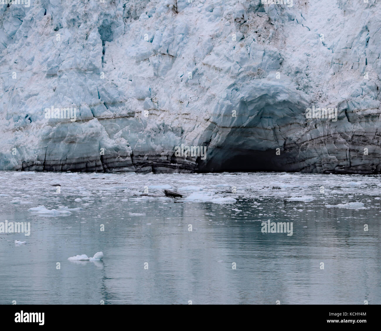 Closeup of the Margerie glacier where it enters the water and caves start to form, Tarr Inlett Alaska - Stock Image