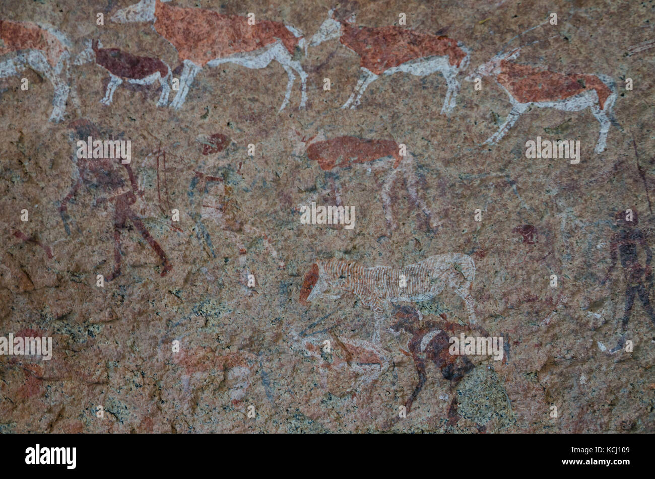 Detailled bushmen or San rock paintings at the White Lady panel, Brandberg, Damaraland, Namibia, Southern Africa - Stock Image