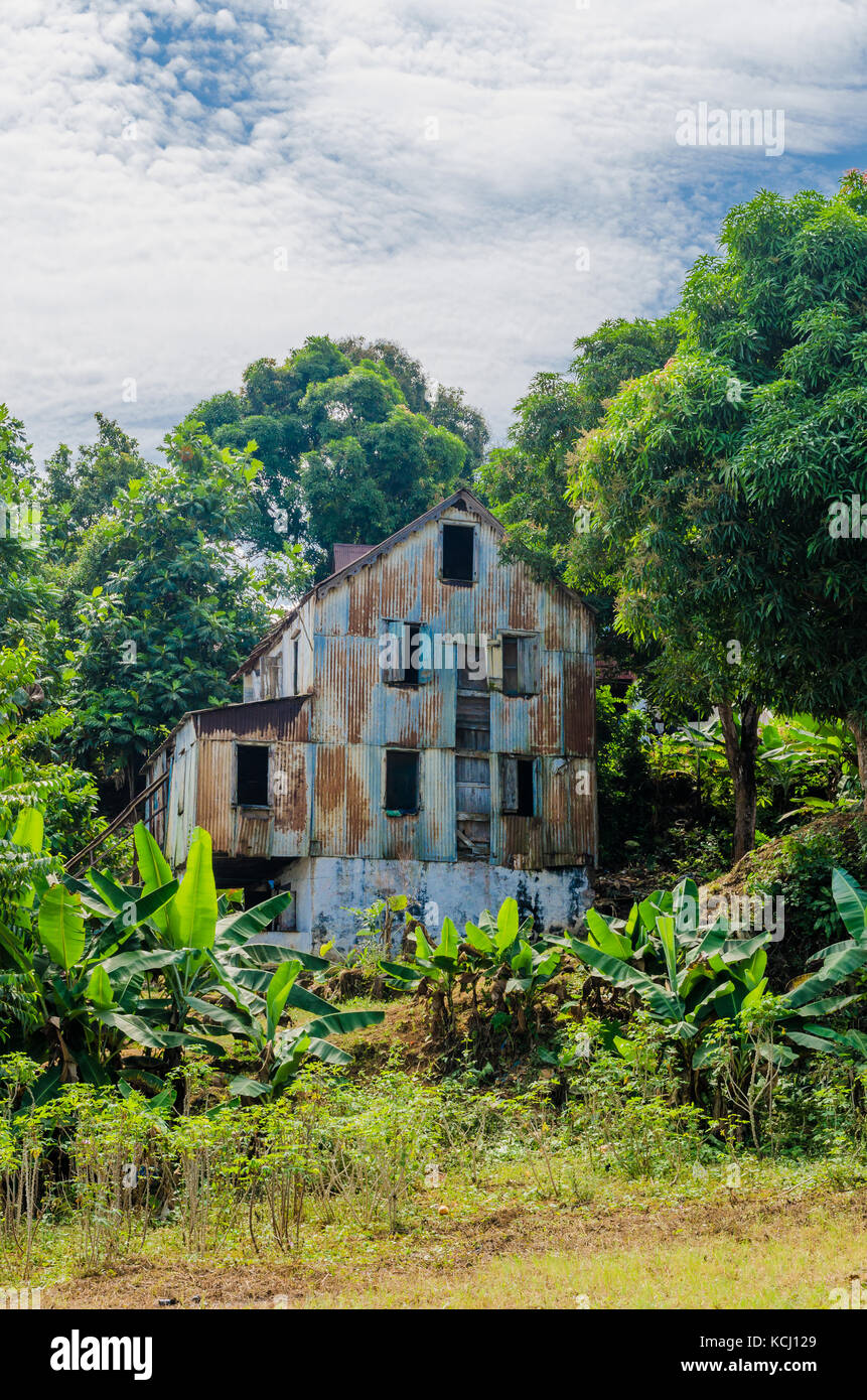 Abandoned and fading house surrounded by forest and banana trees, traces of civil war, Robertsport, Liberia, West - Stock Image