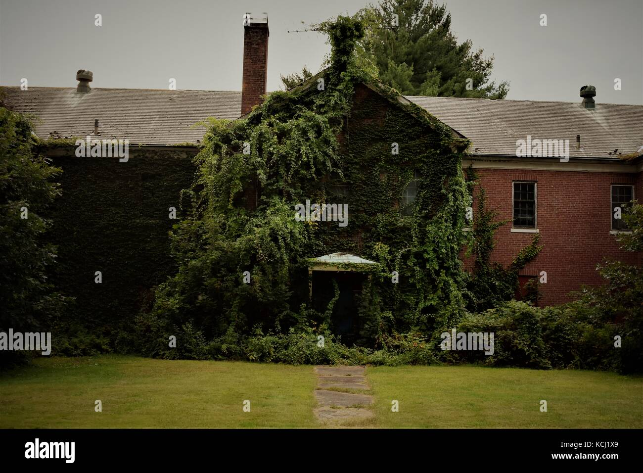 Overgrown abandoned building - Stock Image