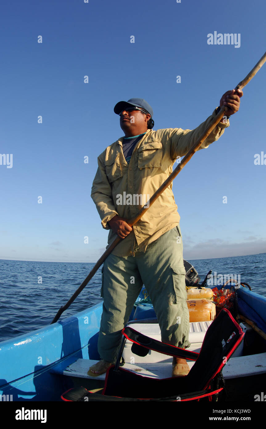 Fishermen fly fishing and casting for juvenile tarpon in the remote creeks of Campeche Yucatan Mexico Stock Photo