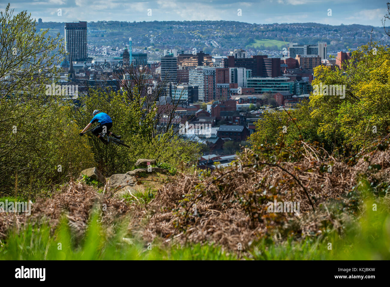 A mountain biker jumps in the air as he rides the trails at Parkwood Springs overlooking Sheffield city centre. - Stock Image