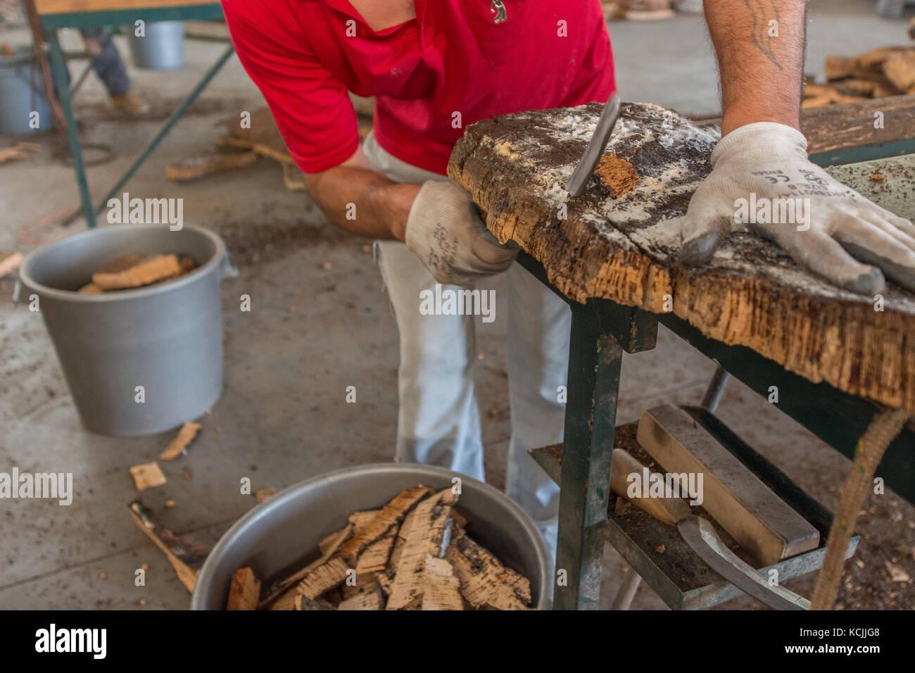 cork production at Azaruja, Alentejo, Portugal - Stock Image