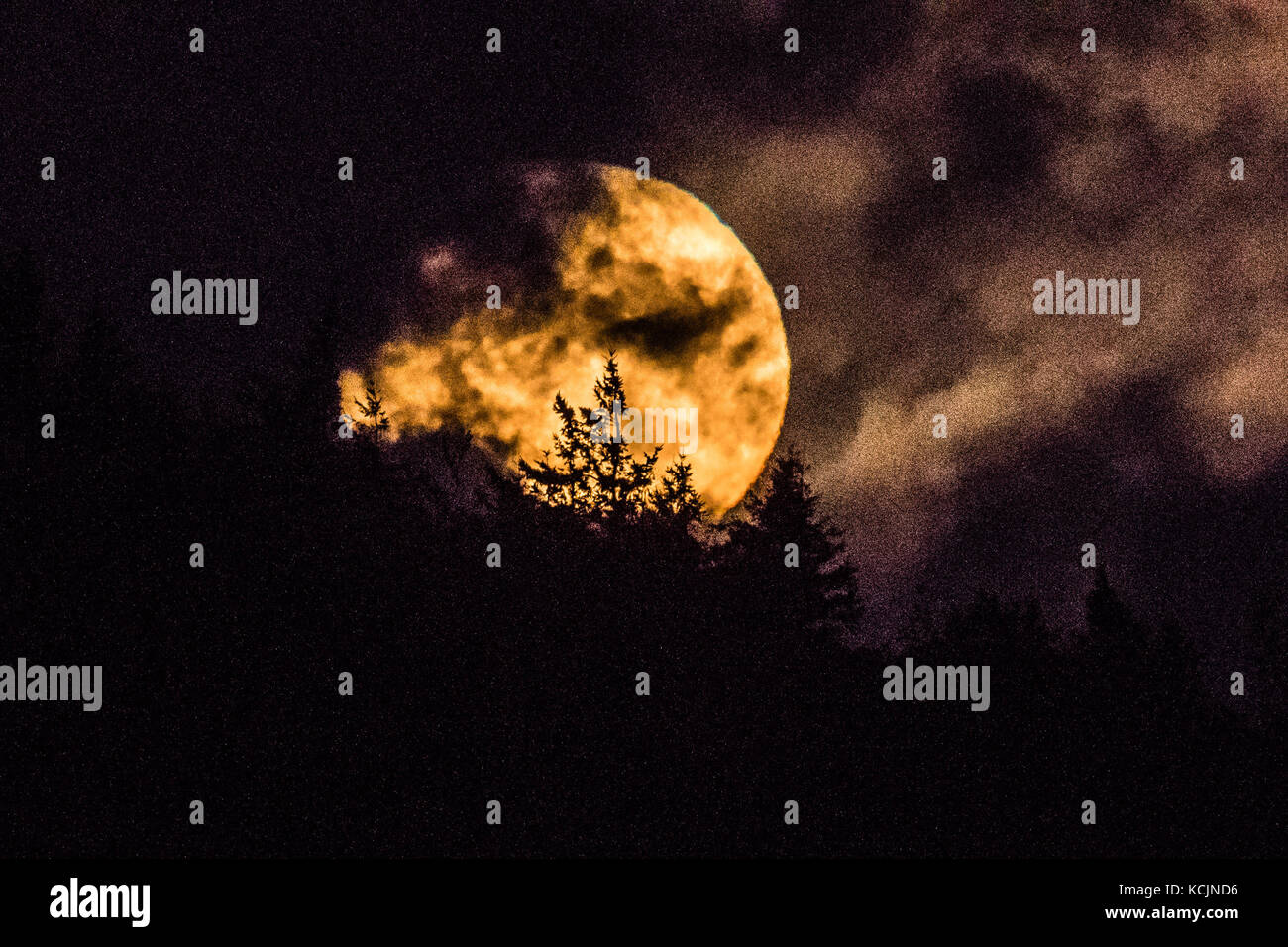 Aberystwyth Wales UK, Thursday 05 October 2017 UK Weather: A glorious 'Harvest Moon' full moon rising dramatically - Stock Image