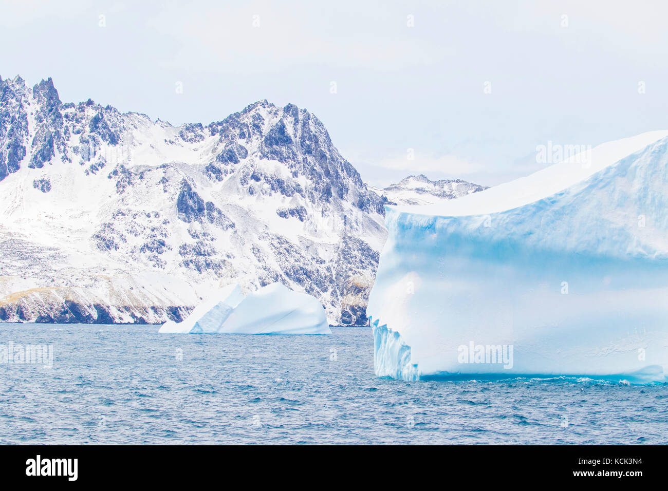 Icebergs in the South Georgia and the South Sandwich Islands - Stock Image