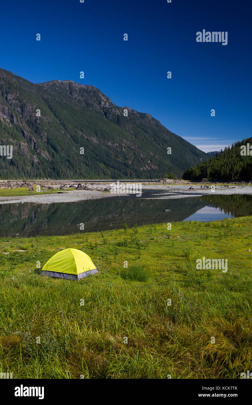 A lone bright green tent at the head of Buttle Lake in Strathcona Park provides stark contrast to a clear blue sky, Stock Photo