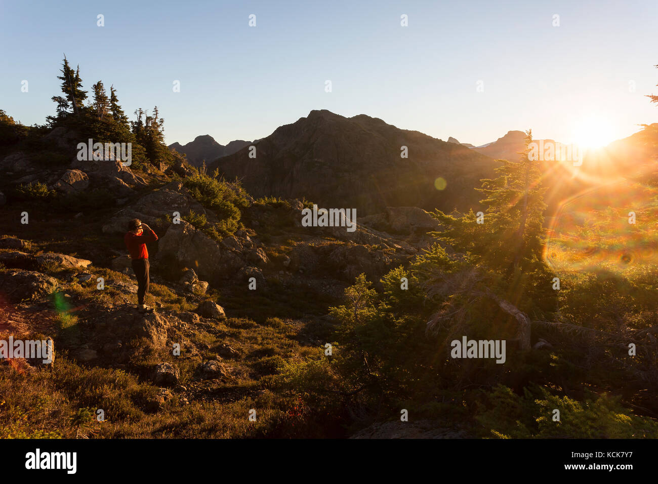 A lone hiker looks to an early morning sunrise illuminating Flower Ridge, Strathcona Park, Central Vancouver Island, - Stock Image