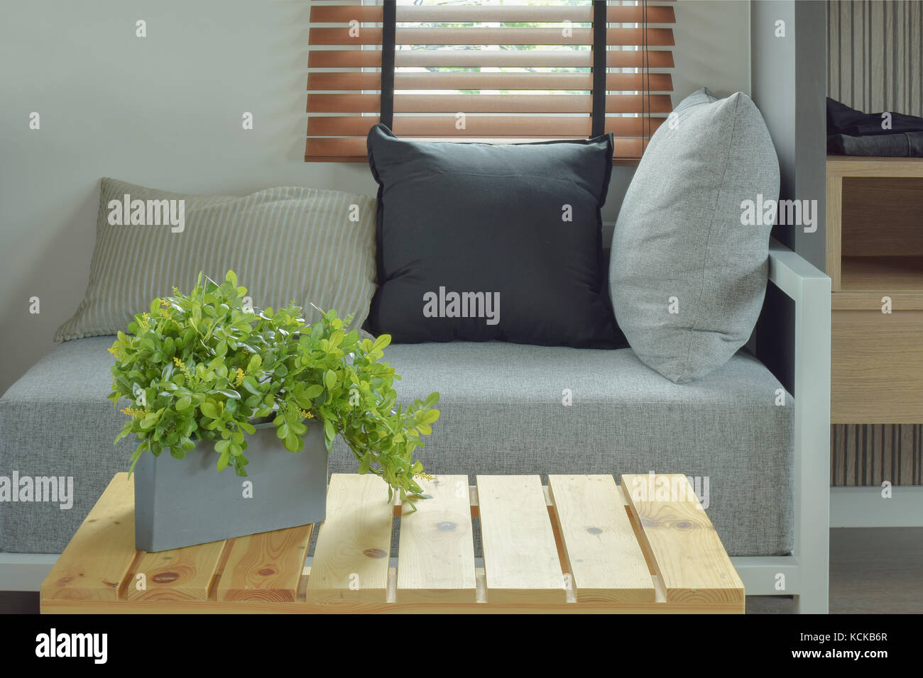 Plant pot on center wooden table and comfy seat in living room - Stock Image