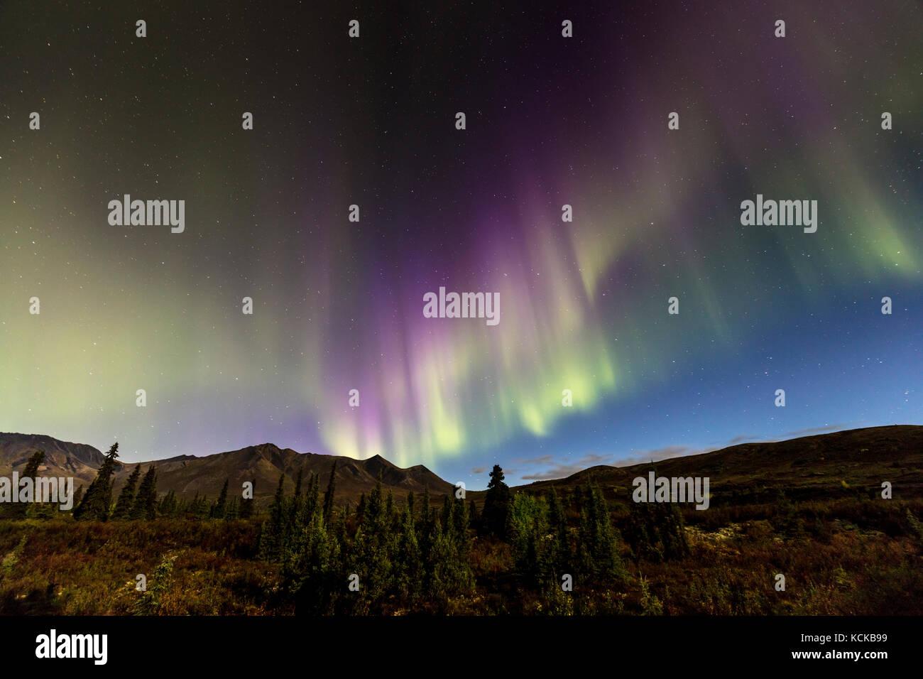 Northern Lights or Aurora Borealis over Tombstone Territorial Park, Yukon, Canada - Stock Image