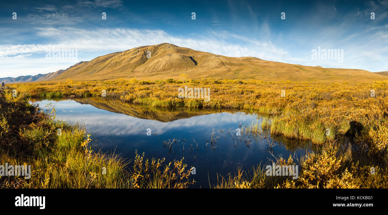 Surfbird Mountain reflection, Tombstone Territorial Park, Yukon (digitally spliced panorama) - Stock Image