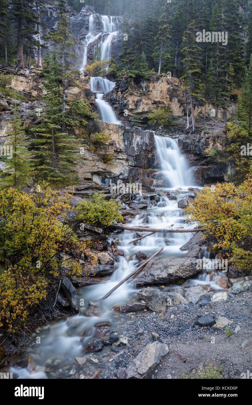 Tangle Creek on the Icefields Parkway, Jasper National Park, Alberta, Canada - Stock Image