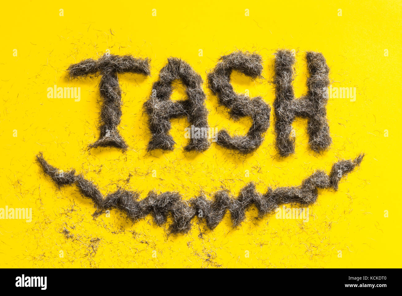 Tash word sign made from real mens beard trimmings on a yellow background. Celebrating movember event - Stock Image