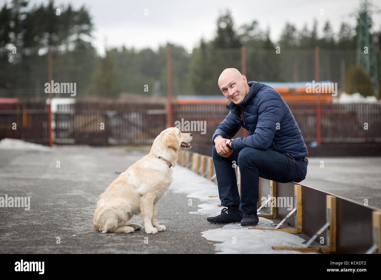 Golden Retriever dog and man - Stock Image