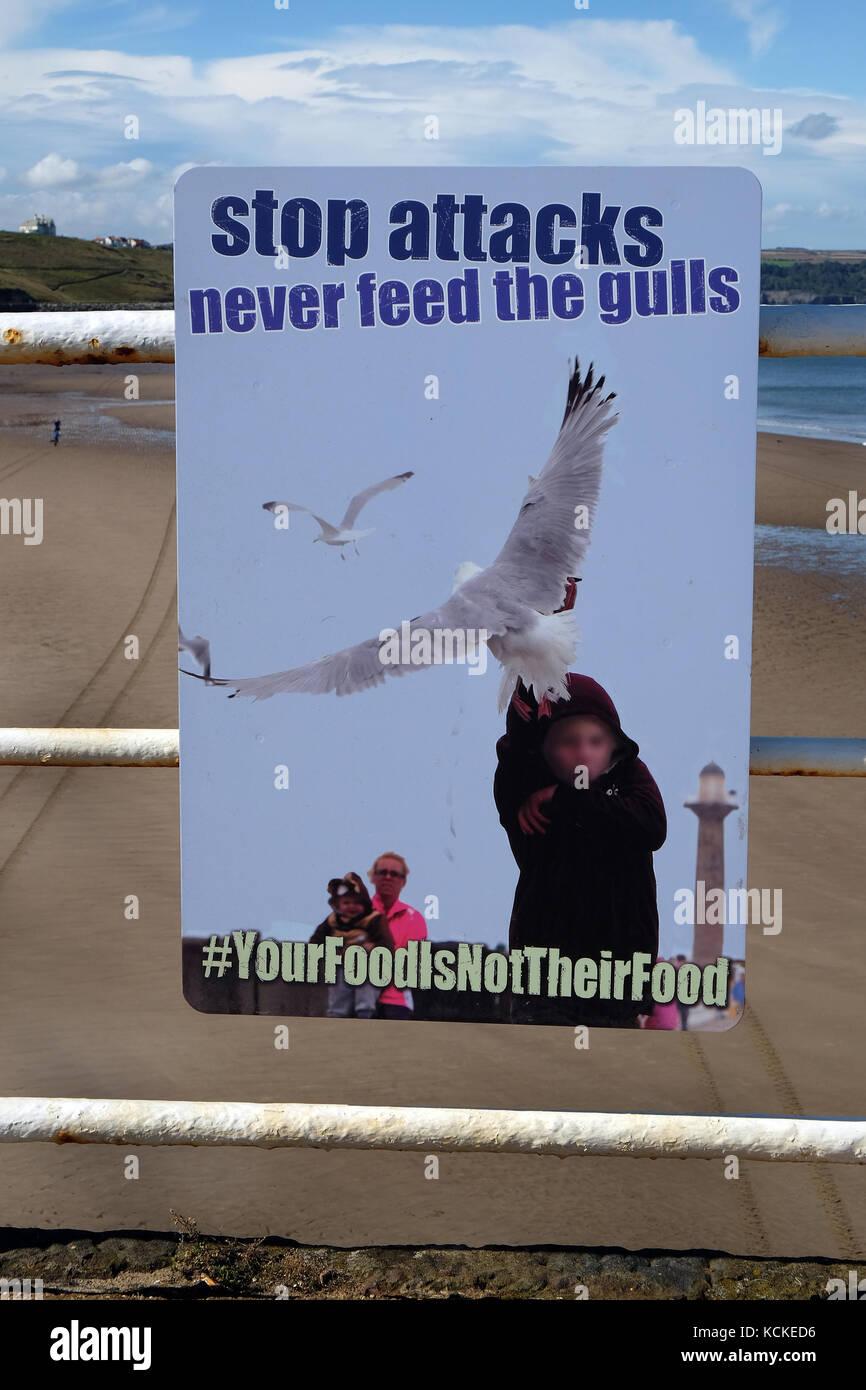 Sea Gull Warning Stock Photos & Sea Gull Warning Stock