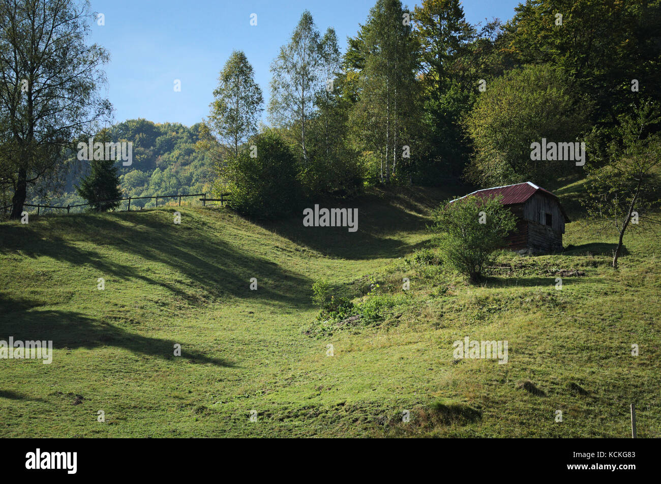 Landscape, cottage in the hills, green wavy meadow with long shadows from the surrounding trees, rural image. - Stock Image