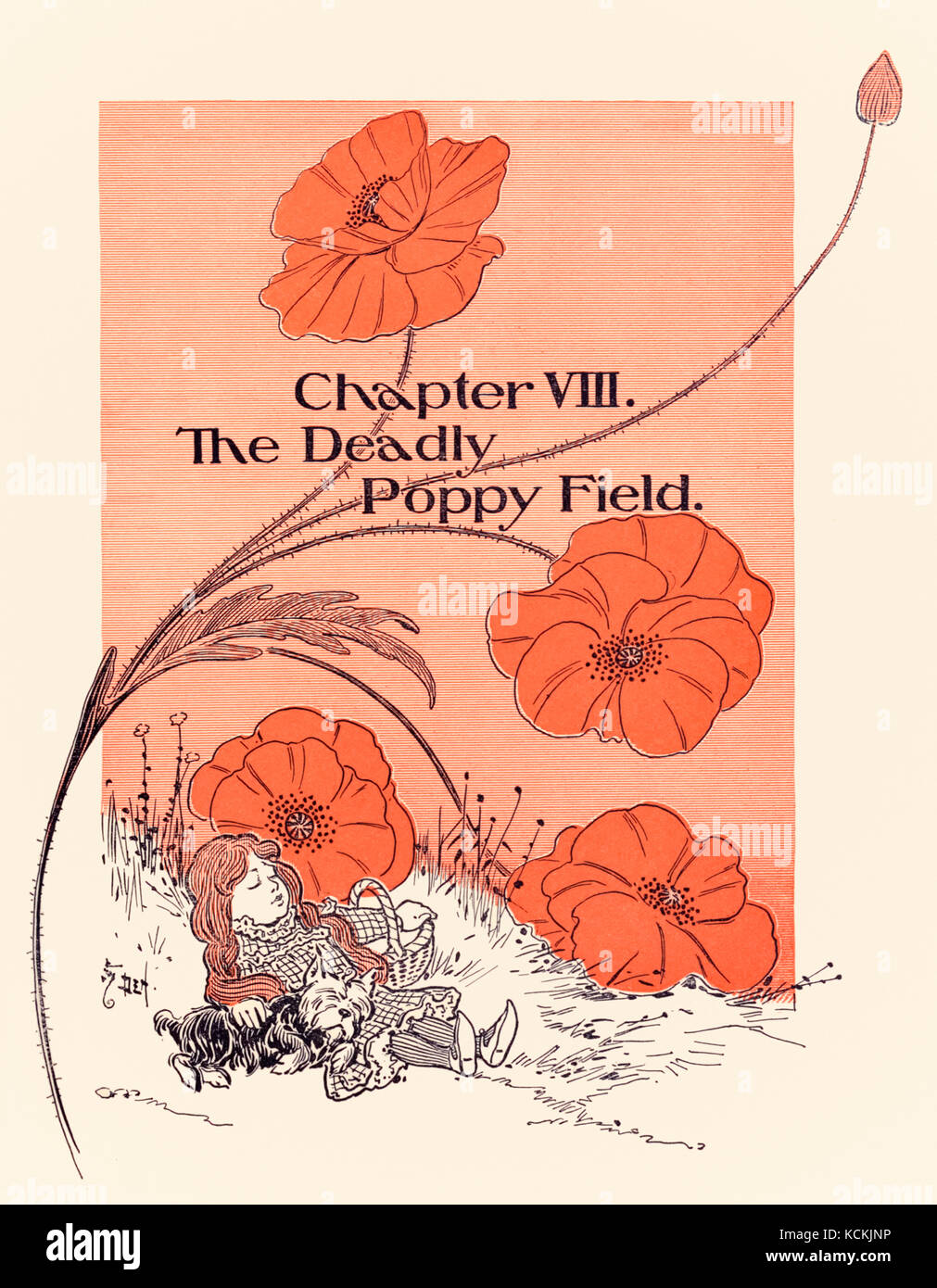 'Chapter VIII The Deadly Poppy Field', chapter opener from 'The Wonderful Wizard of Oz' by L. Frank Baum (1856-1919) - Stock Image