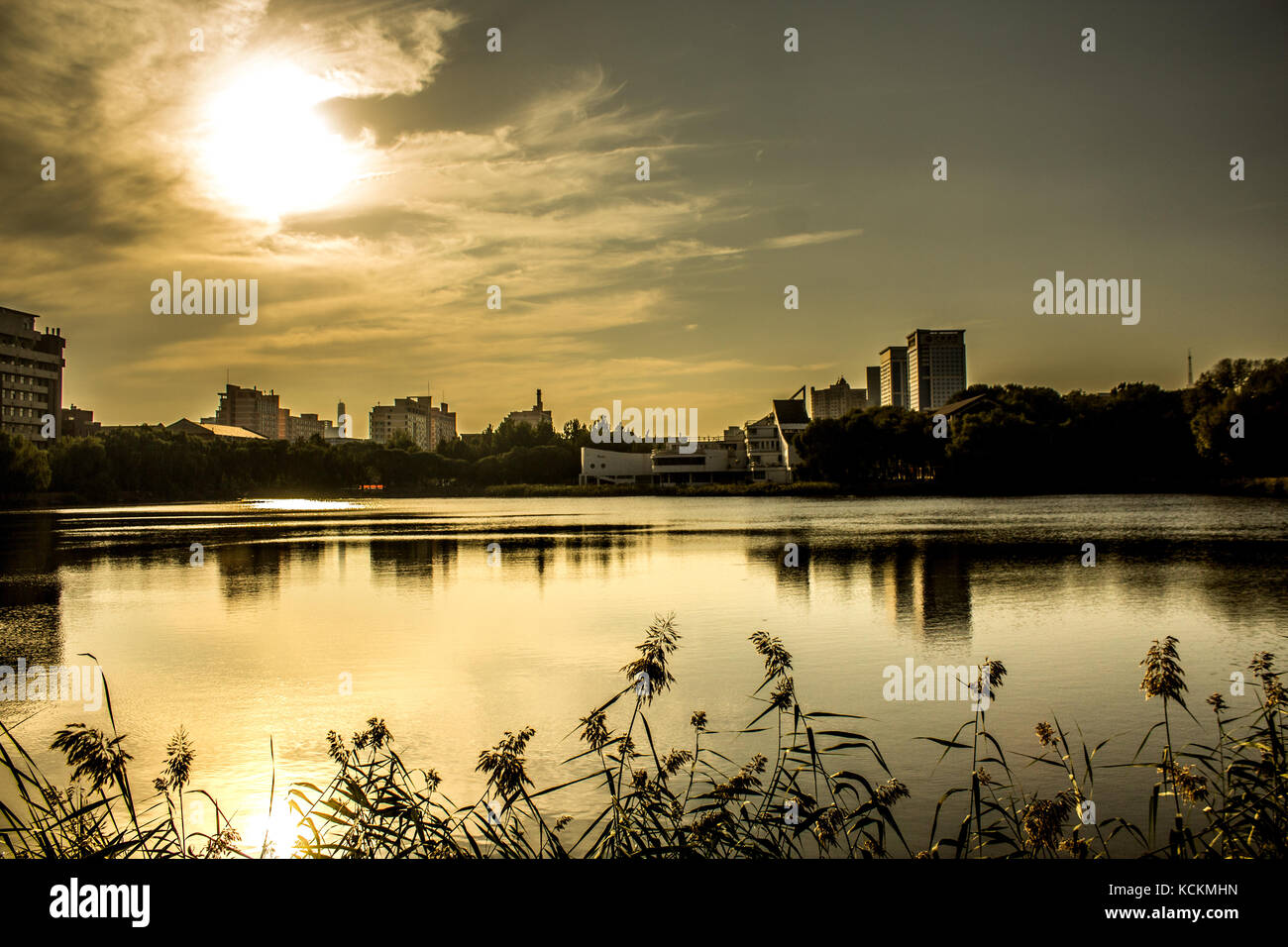 Photography Nature Background Hd Stock Photos Photography