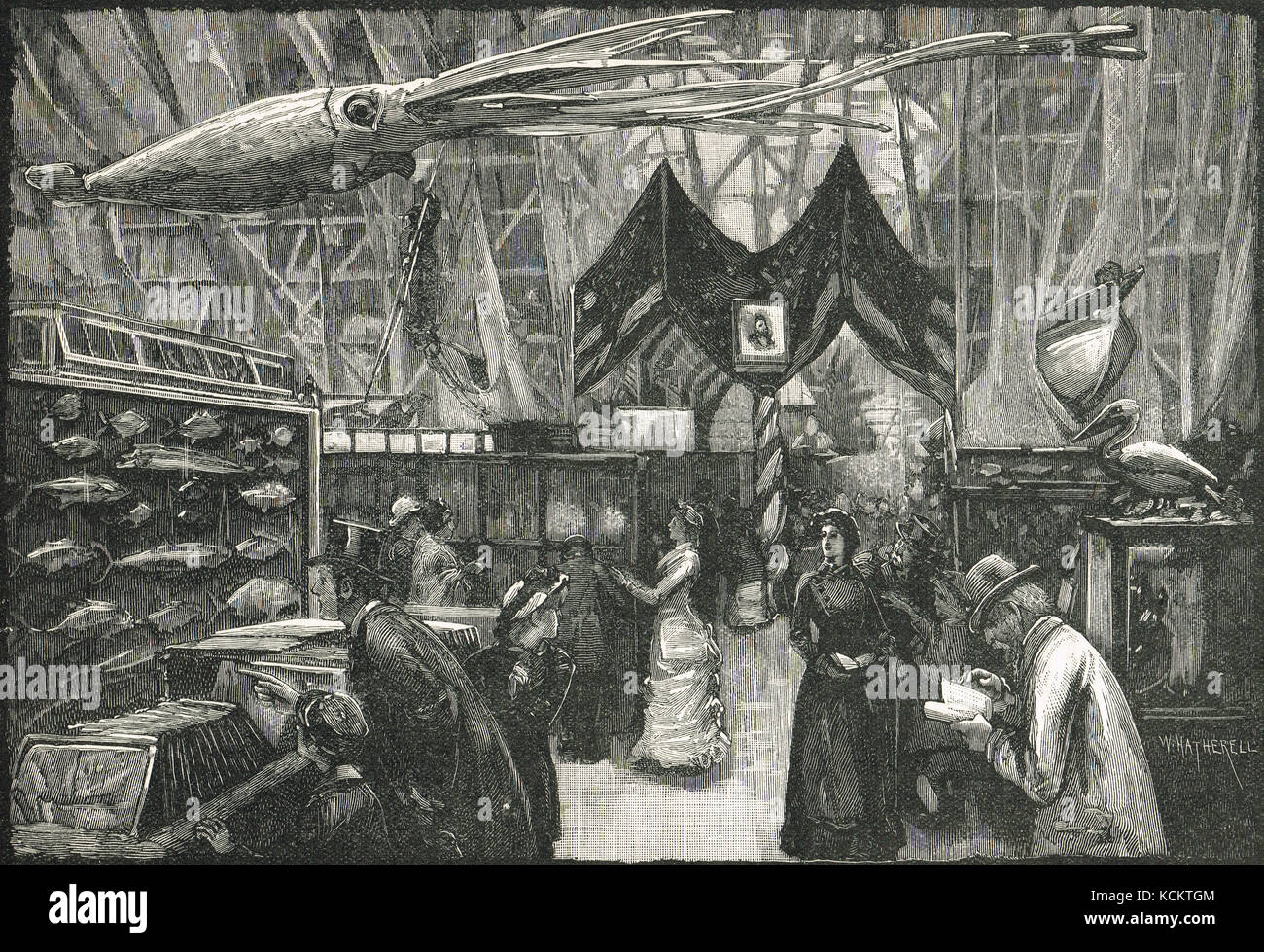 United States Court at The International Fisheries Exhibition of 1883, - Stock Image