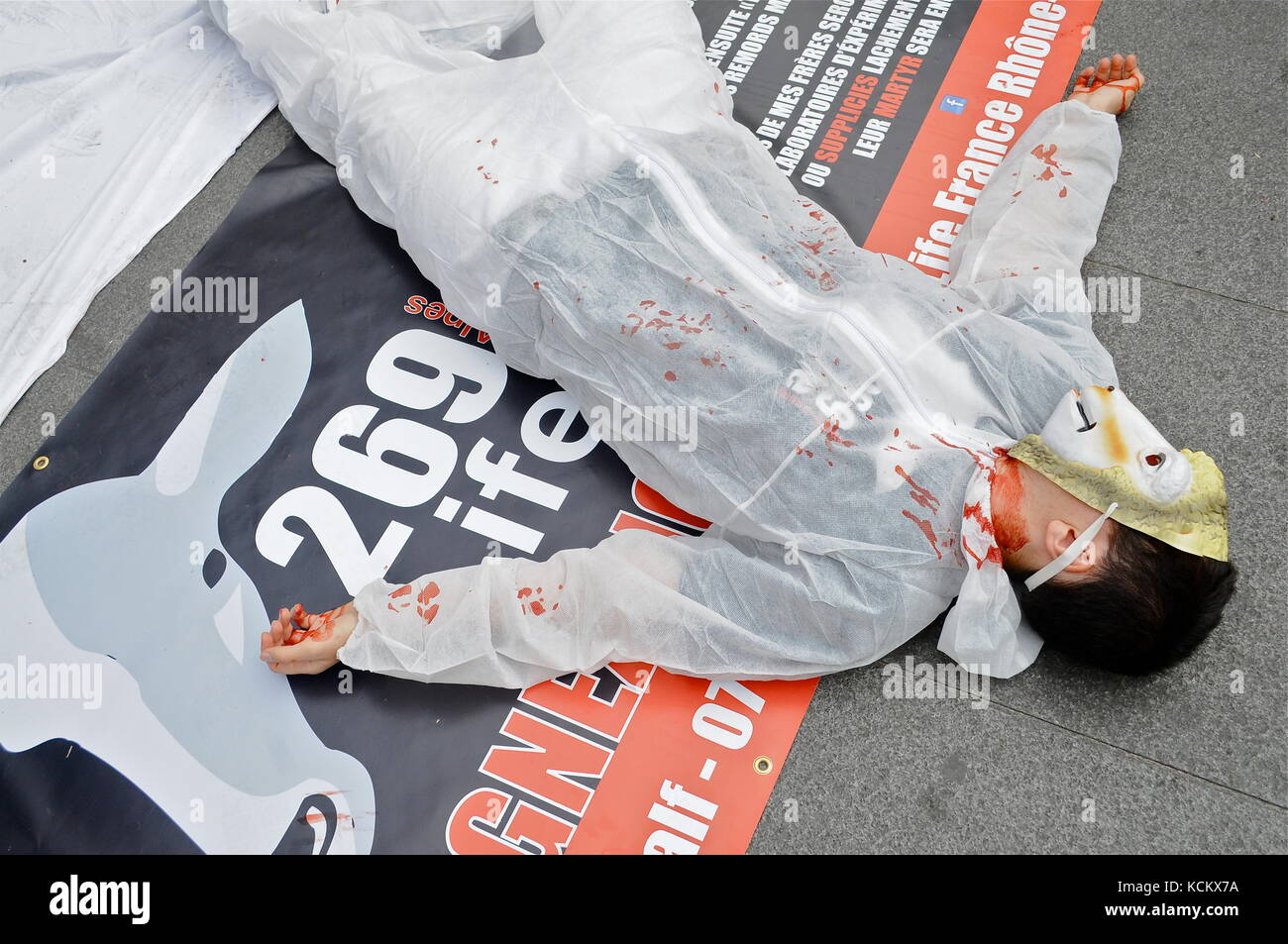 L269 Animals rights activists protest violences made to animals and ask for slaughterhouses closing down, Lyon, - Stock Image
