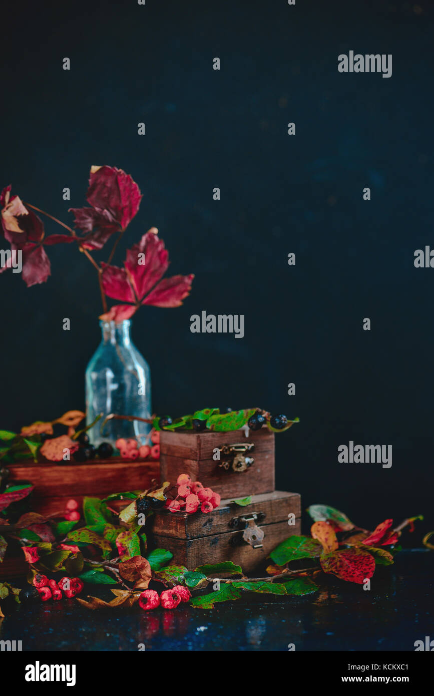 Red autumn leaves in a glass bottle on a stack of wooden boxes, dark still life with a halloween mood and rowan - Stock Image