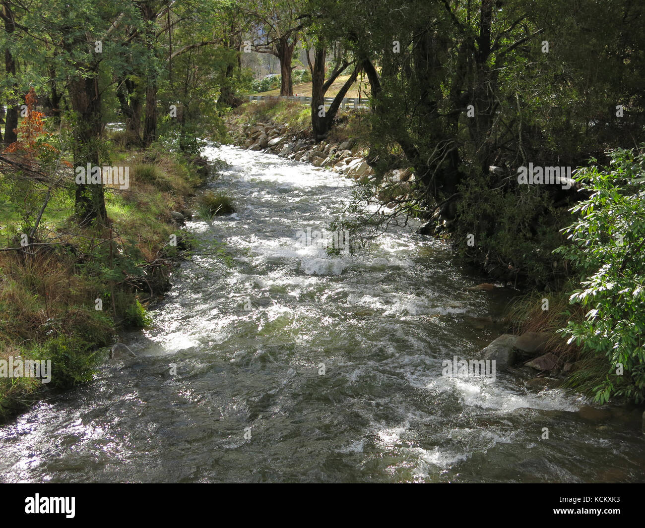 Swiftly flowing east branch of the Ovens River. Harrietville, northeast Victoria, Australia - Stock Image