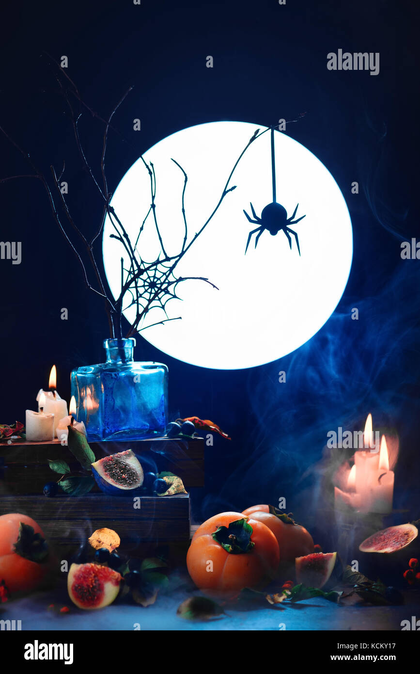 Spider in a web silhouette in full moon light. Conceptual Halloween still life with smoke, persimmon, dry branches, - Stock Image