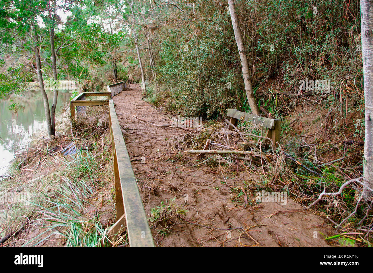Flood debris piled up on the damaged Platypus Walk on the bank of the Mersey River. Warrawee Forest Reserve, Latrobe, - Stock Image