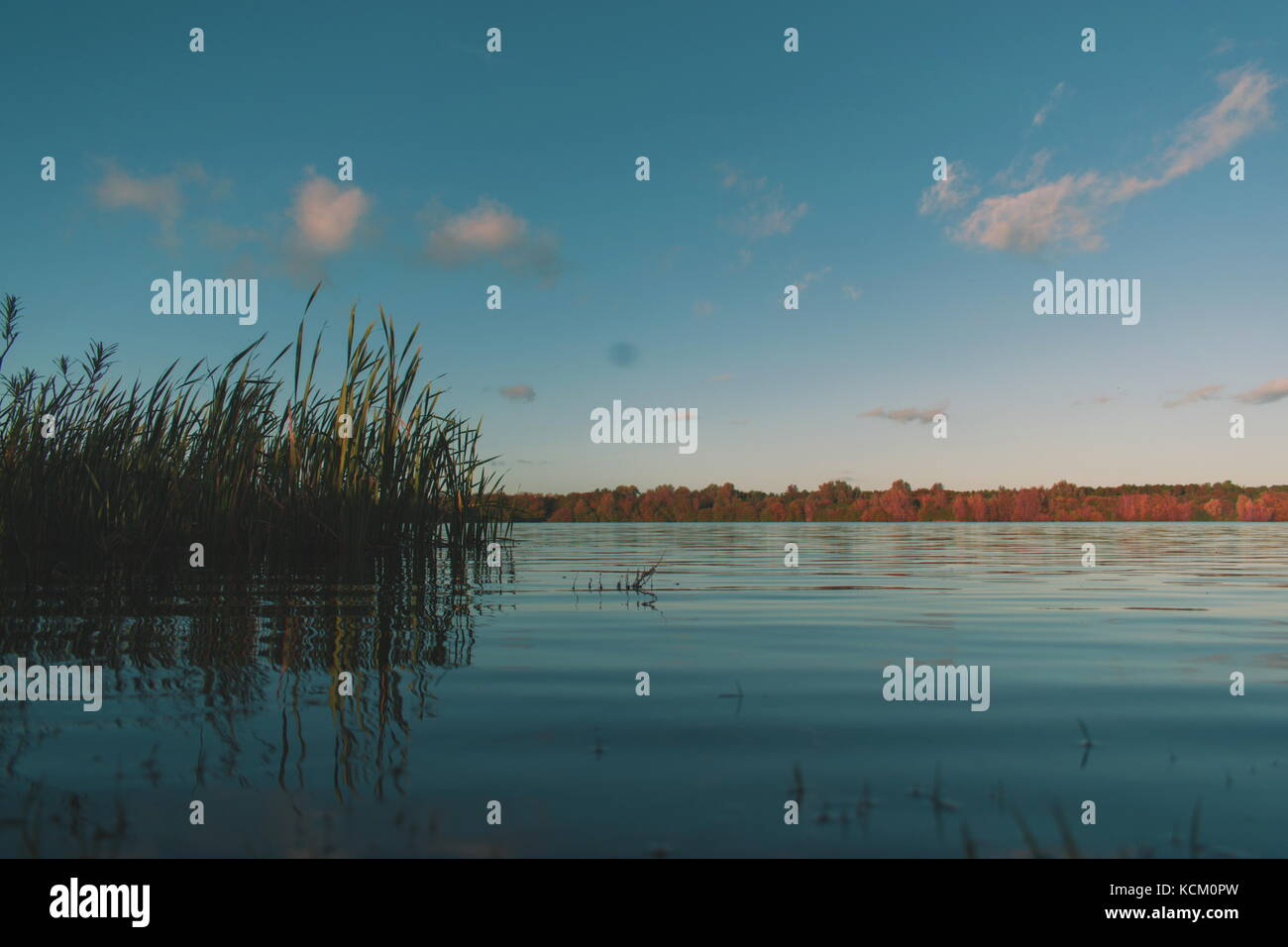 Abandoned quarry - Stock Image