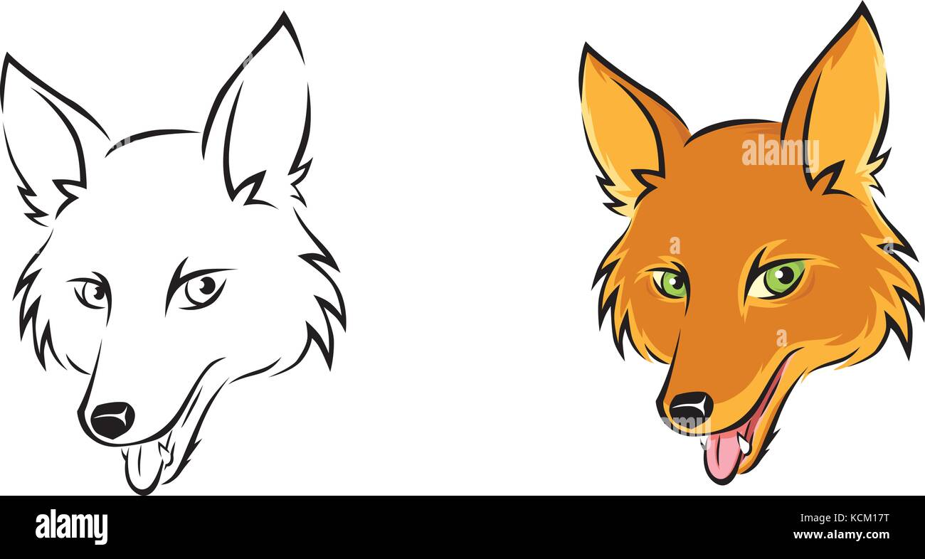 Vector illustration, portrait of a fox in two versions, one is black and white, the other one fully colored. - Stock Image