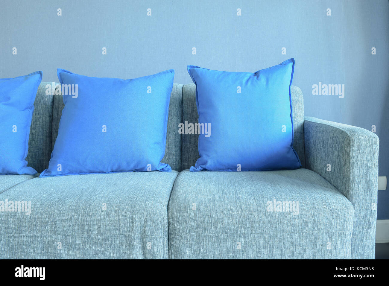 Fabulous Blue Color Pillows Setting On Light Blue Sofa With Blue Wall Uwap Interior Chair Design Uwaporg