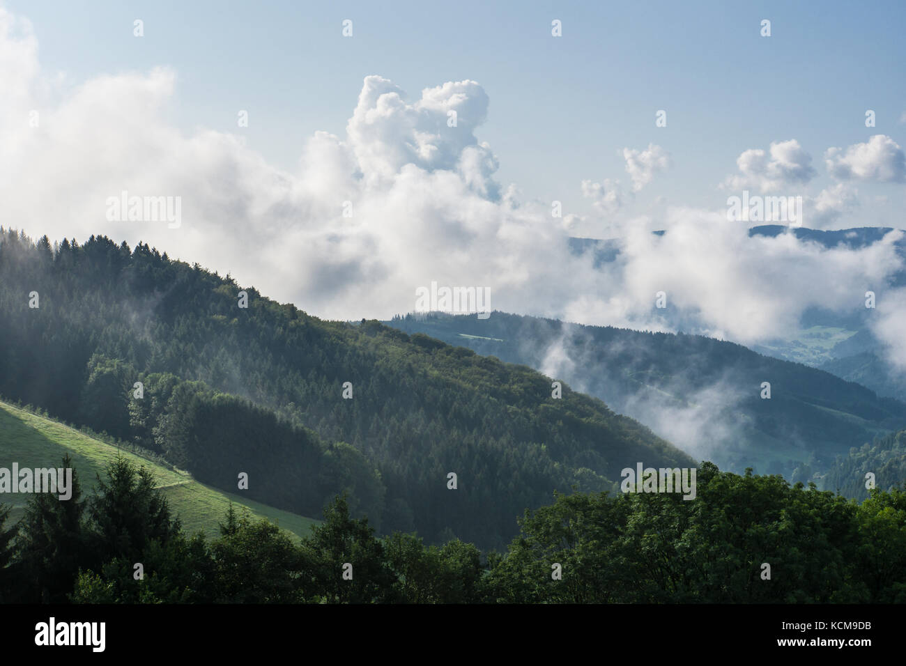Autumn morning above the black forest germany with waft of mist - Stock Image