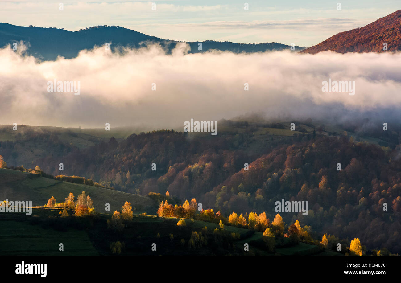 thick fog over the hill in autumn mountains. gorgeous nature scenery at sunrise Stock Photo